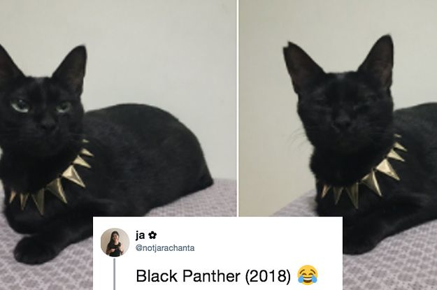 """23 """"Black Panther"""" Tweets That Will Make You Scream """"Wakanda Forever!!!"""""""