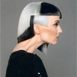 2011 North America Trend Vision Winners and Finalists: Killer Color, Killer Hair   Canadian Color Finalist: Ramsey Sayah   Trend: Polaris  Category: Silver  Salon: Texture Hair Salon | Ottawa, ON via www.texturehairsalon.ca