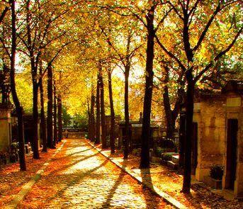 In Paris - Five Paris Autumn Walks: Pere-Lachaise, Tuileries, Luxembourg, Buttes Chaumont, Monceau