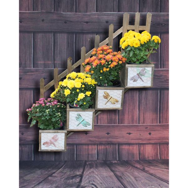 This tiered planter box will add decorative charm to your yard or home. It includes four individual planter boxes that can be used to display plants, keepsakes or anything you wish. Its step design cr
