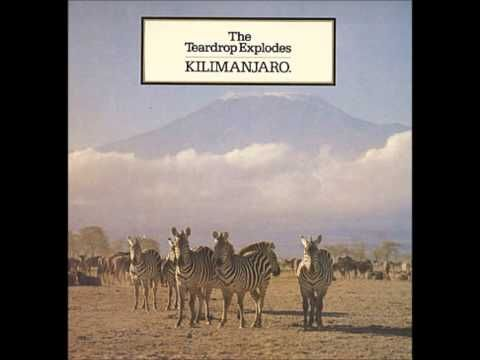 The Teardrop Explodes - Kilimanjaro [Full Album] - YouTube
