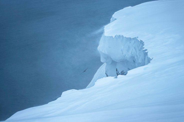 Gennaio 2017. Circondato dal bianco abbagliante delle Terre del Nord il corvo si staglia nel cielo preciso ed elegante come un segno degli dei. Al suo profilo morbido e equilibrato rendono omaggio le linee ricercate di questo elegante modello unisex.#Tulugaq http://nuiit.it/it/15-tulugaq