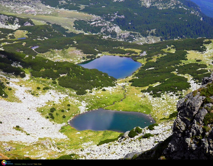 Calcescu Lake - ROMANIA