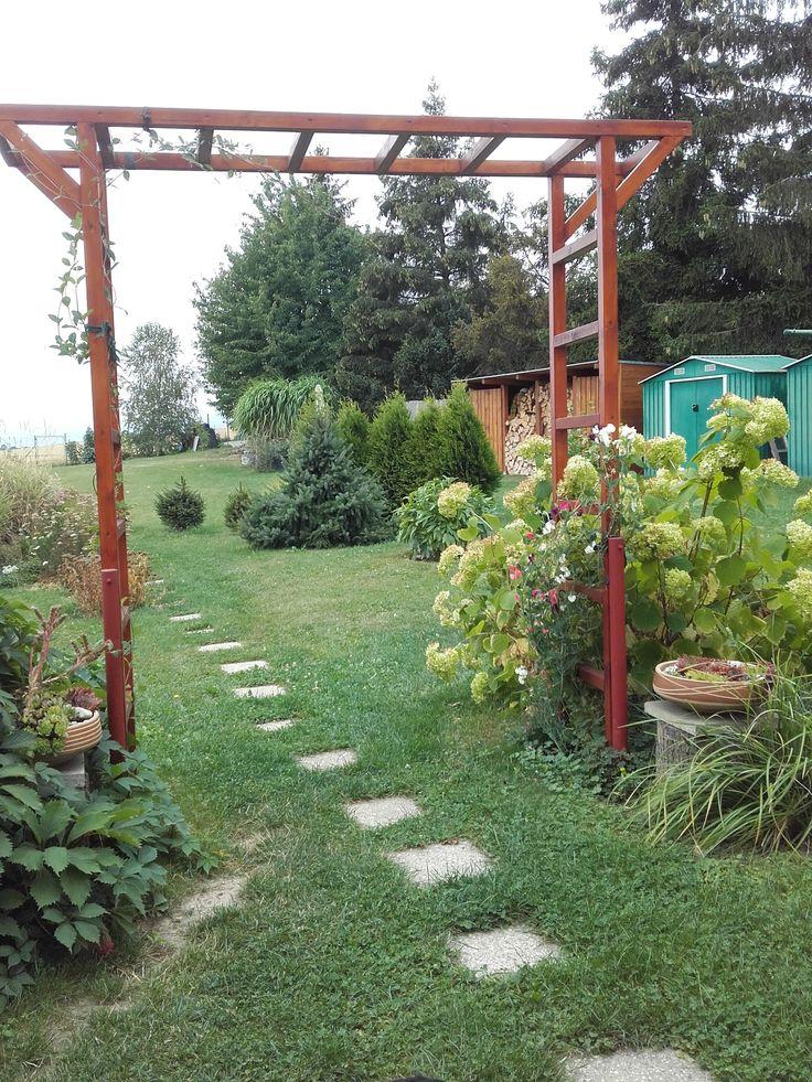 Pohled do zahrady od terasy začátek 8/2017