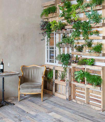 Oltre 25 fantastiche idee su arredamento piante da interni for Arredamento pallets