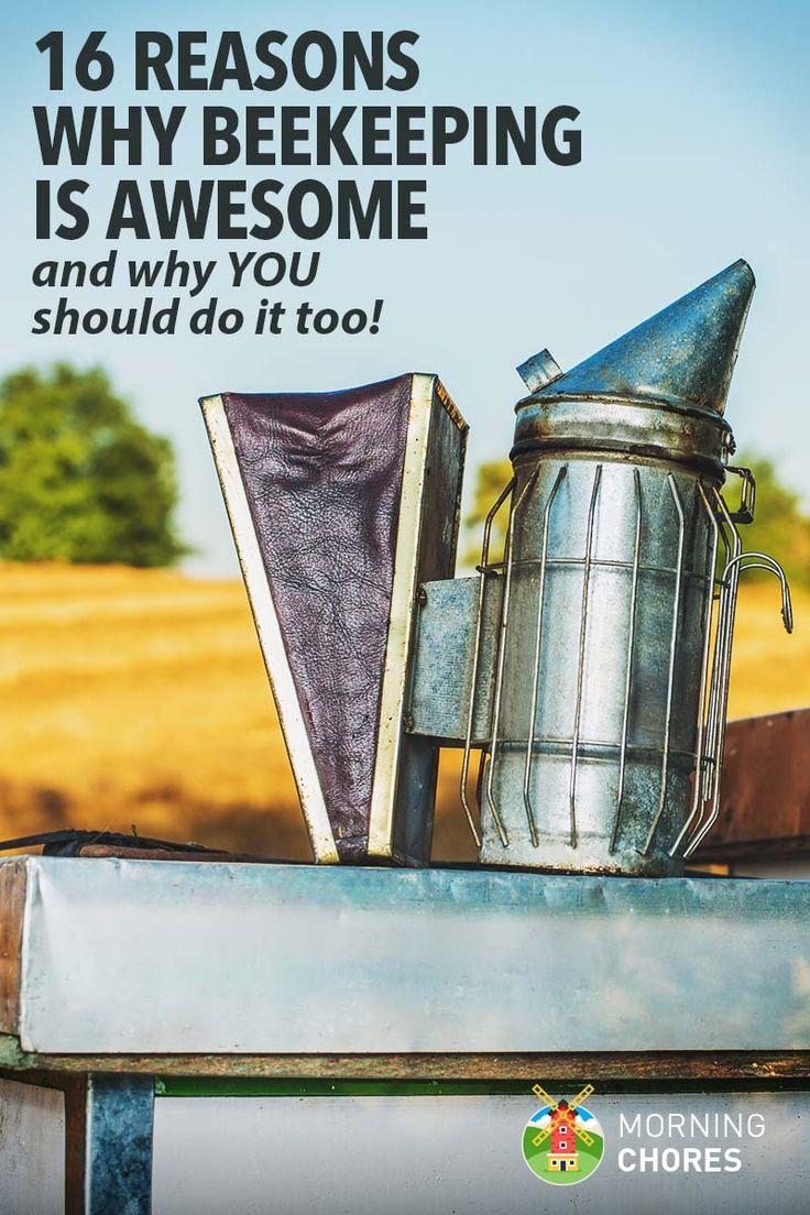 210 best farming bees images on pinterest honey bees gardening