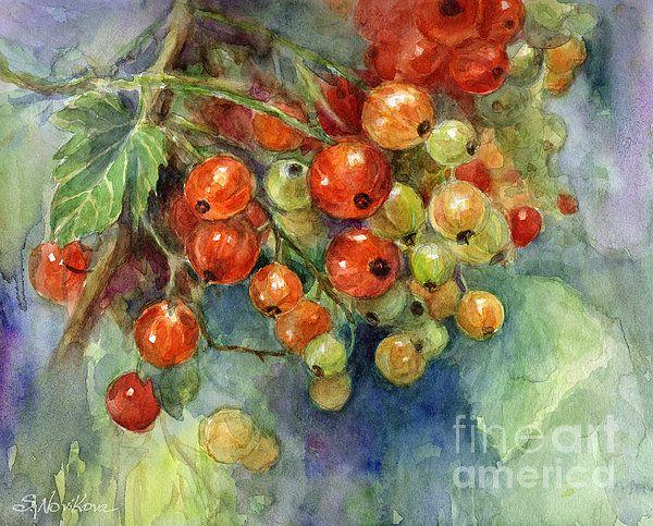 Current Berries