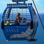 Arthurs Seat Eagle