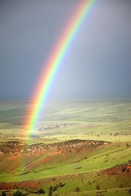 Big Horn Rainbow, Wyoming