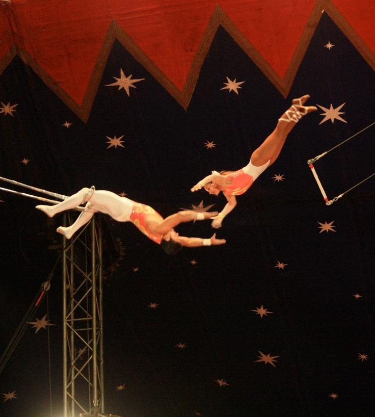 Trapeze artist circus