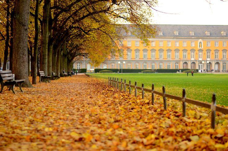 Autumn 2012, University of Bonn, Germany