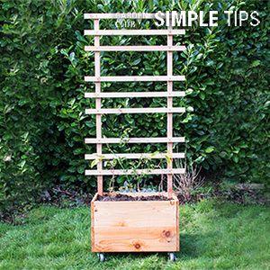 DIY raised garden box with trellis.  Urban gardening ideas. VErtical gardening projects