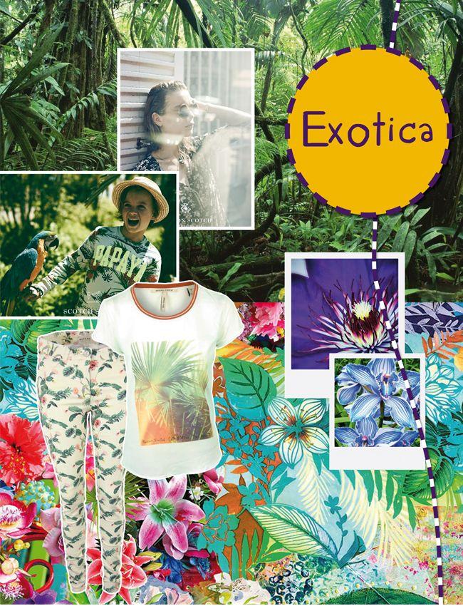 Hawaï bloemen en exotische prints Vrolijk word je zeker van deze exotische trend. Je ziet deze zomer heel veel exotische prints. Bijvoorbeeld palmbomen, kokosnoten, papegaaien of hawaï bloemen. Ze geven jouw outfit een exotische tintje. Doe je ogen dicht en dagdroom jezelf op witte stranden en paradijselijke eilanden. De exotica modetrend is gelukkig niet alleen gereserveerd voor de vakantietijd, want je draagt het ook gewoon in de stad, dat komt omdat het zo'n coole, casual vibe heeft.