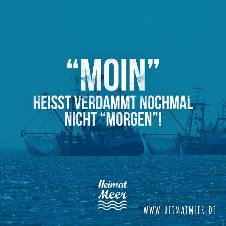 """MOIN HEISST NICHT """"MORGEN""""! Mehr Moin hier >>"""