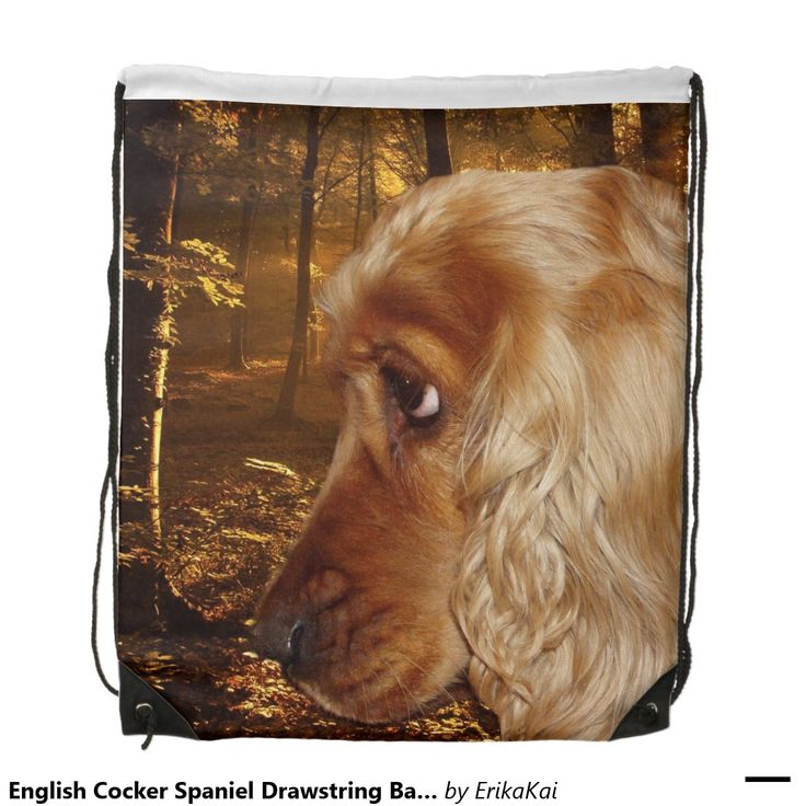 "English Cocker Spaniel Drawstring Backpack. 100% polyester. Dimensions: 14.75"" x 17.3""."