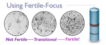 Fertility monitors are a great way to use the body's natural hormone shifts to pinpoint ovulation and fertility to avoid or achieve pregnancy. Four methods reviewed.