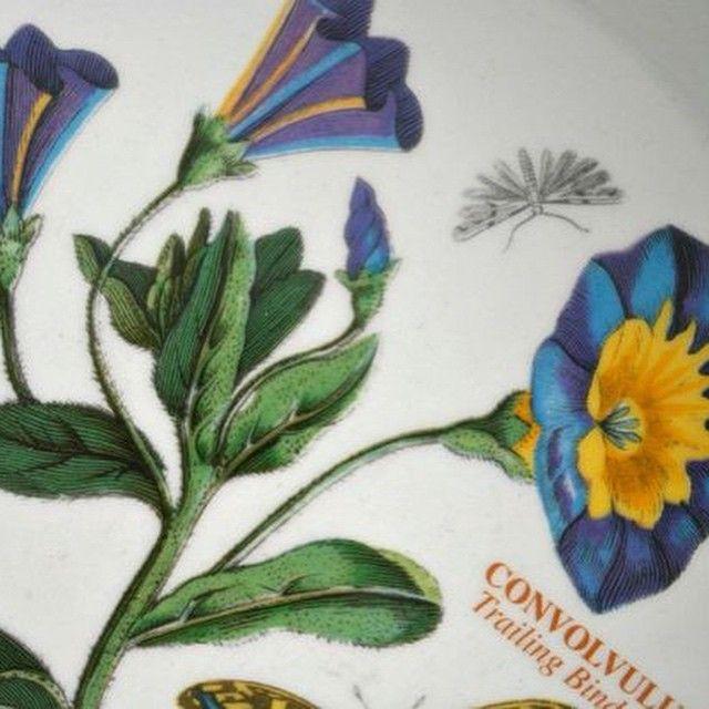 Vintage Portmeirion Botanic Garden Trailing Bindwind Motif Introduced In  1972. #nofilter #botanicgarden #