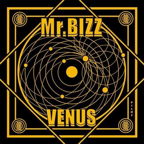 Mr. Bizz - Venus / Reload Black Label / RBL036 - http://www.electrobuzz.fm/2016/07/01/mr-bizz-venus-reload-black-label-rbl036/