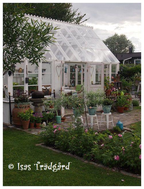 Isas Trädgård: Flytt av träd och jordslagna rosor