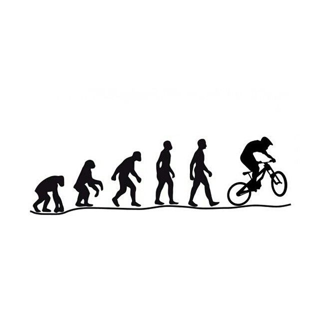 """#evolution"""