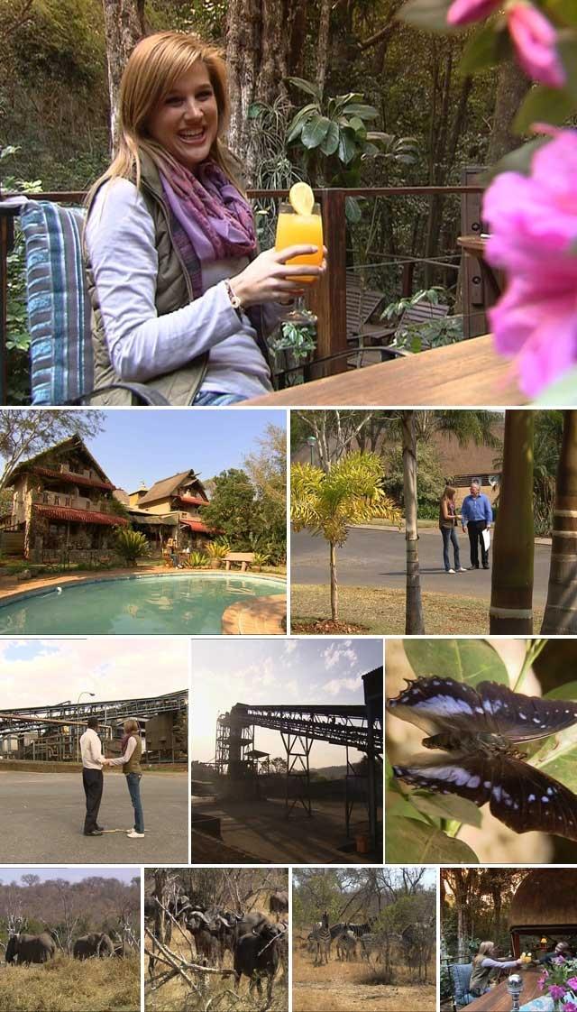 Malelane, Mpumalanga http://www.pasella.com/artikels/RUSTIG-Malalane-–-plek-van-lalapalms.html?articleID=1191