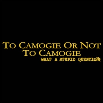 To Camogie Or Not To Camogie, What A Stupid Question T-Shirt
