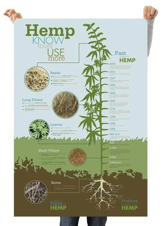 the applications of hemp across history In history history of marijuana in america by  the distinction between marijuana and hemp has always  workable medical cannabis programs now legal across 30.