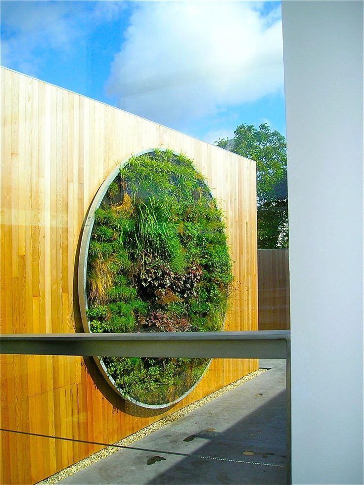 DEGELIJK UITLEG !!!! en tips. Tips over hoe je je stadstuin voorziet van een verticale tuin. We bespreken aanleg, planten en onderhoud.