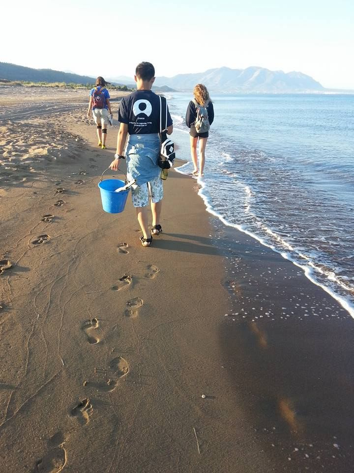 Another early morning turtle walk on a beautiful Grecian beach!  #gvi #volunteer