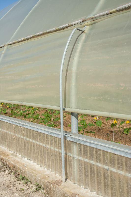http://www.greenhouses.gr/portfolio/μονα-τοξωτα-θερμοκηπια-τουνελ