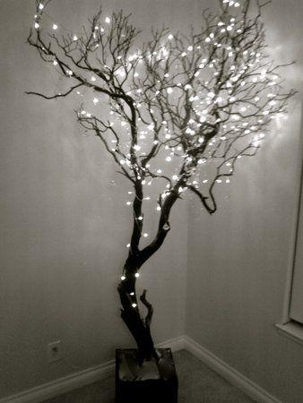 RAmas de árbol con luces led