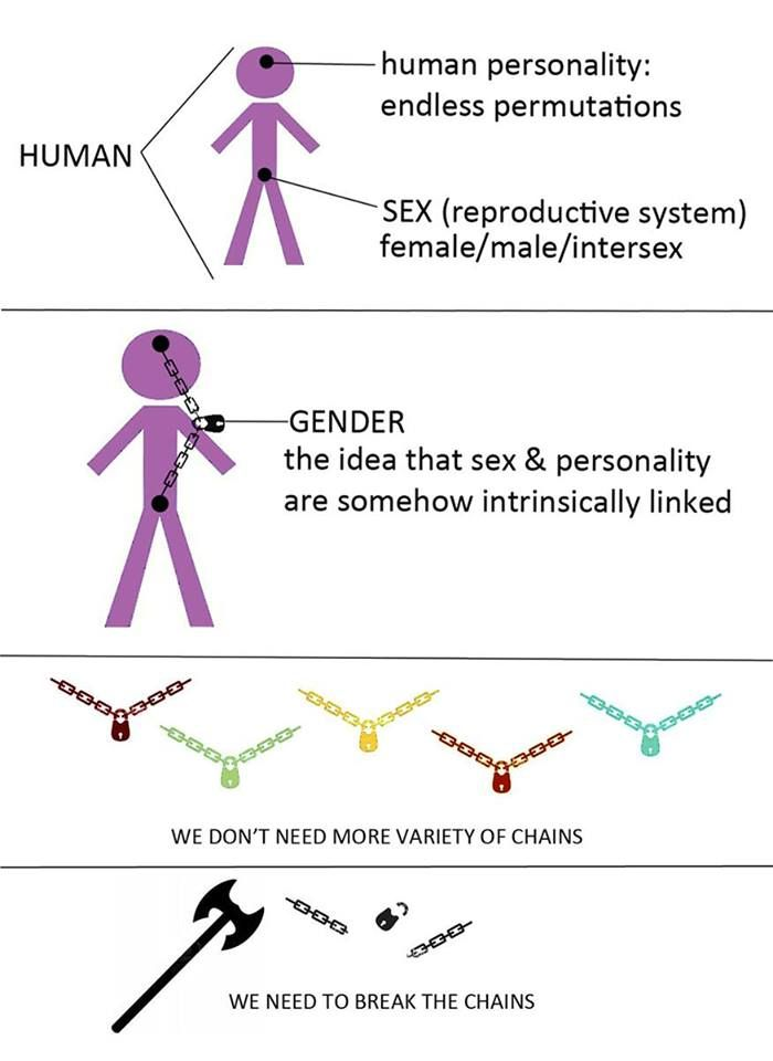 "an overview of the social aspects of sex and gender Define and differentiate between sex and gender  while the biological differences between males and females are fairly straightforward, the social and cultural aspects of being a man or woman can be complicated (photo courtesy of facemepls/flickr)  summary the terms ""sex"" and ""gender"" refer to two different identifiers sex."