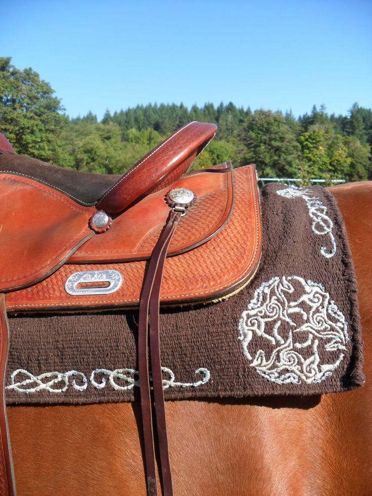 51 best epona celtic goddess and horses images on pinterest celtic cowhorse couture epona now at elaines feed tack in scappoose fandeluxe Gallery