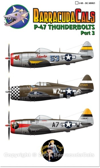 P-47 Thunderbolts - Part 3 - 1/48 Scale