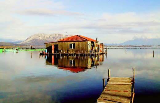 my world : Mesologgi (lagoon)-Μεσολόγγι(λιμνοθάλασσα)