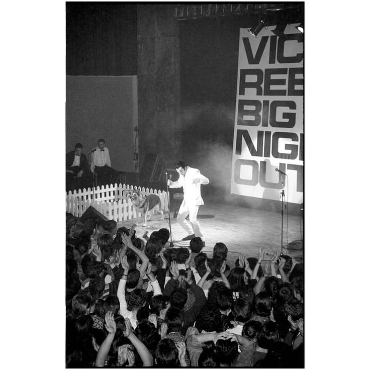 "42 Likes, 3 Comments - Jack Dent (@jackdent59) on Instagram: ""Another from the archives. Vic Reeves Big Night Out, 1990 tour. Possibly Liverpool Poly. •…"""