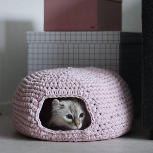 Patrón Casita para gatos