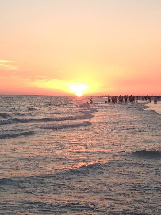 8 Things to Do in Sarasota, Florida