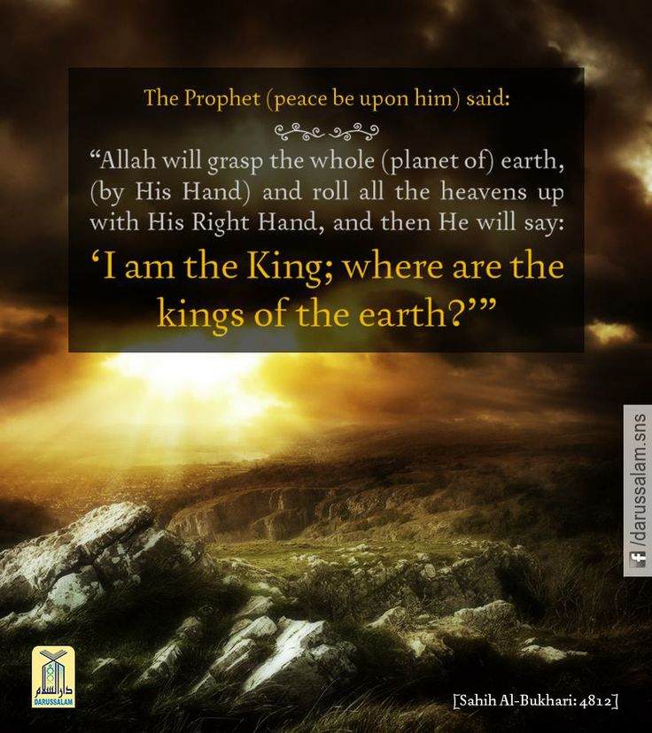 the prophet muhammad and the environment What did prophet muhammad teach the mission of prophet muhammad, pbuh, like all other prophets in an environment full of resentment and staunch opposition, he always adopted a forgiving approach, never avenging any wrong done to him.