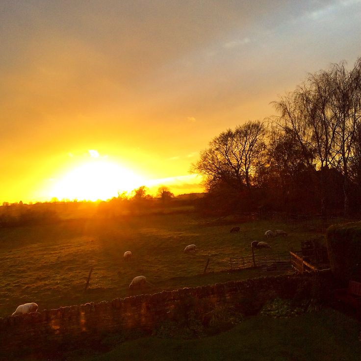 Golden Sunset in Brington.