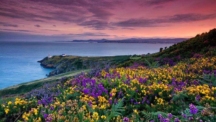 Ireland in pictures: six stunning images of Ireland in summer, from the Wild Atlantic Way to the Slieve League Cliffs
