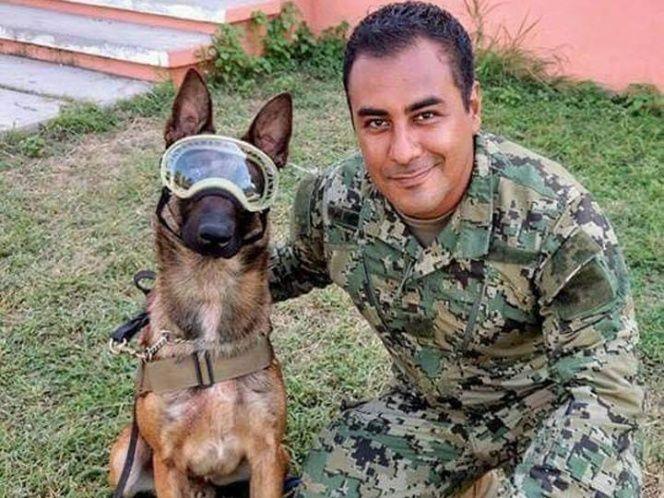 El equipo canino de la Marina se ha convertido en uno de los más admirados en los trabajos de búsqueda y rescate en la CDMX tras el sismo de 7.1 grados el pasado martes 19