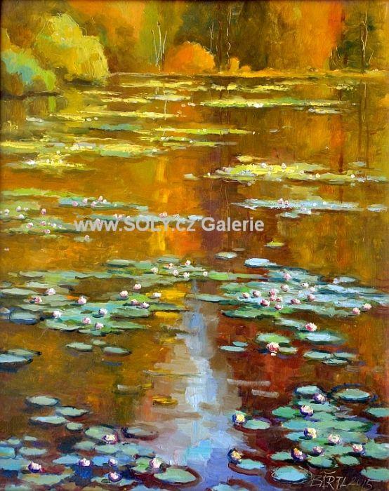 Zrcadlení, olej na desce, 40x50 cm, originální obraz český malíř cena 12 000,-, Jezero, lekníny, vodní hladina