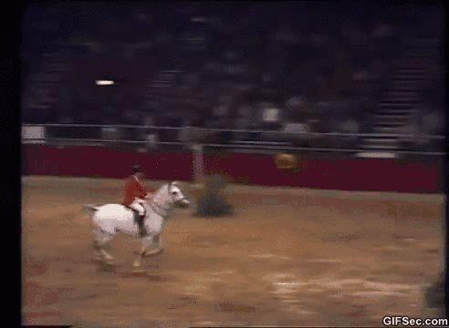 Horse jump GIF - www.gifsec.com
