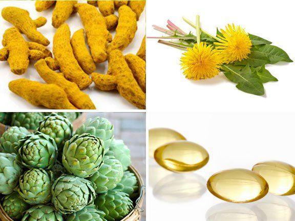Bitterstoffe stärken die Galle und fördern die Verdauung von Fett.