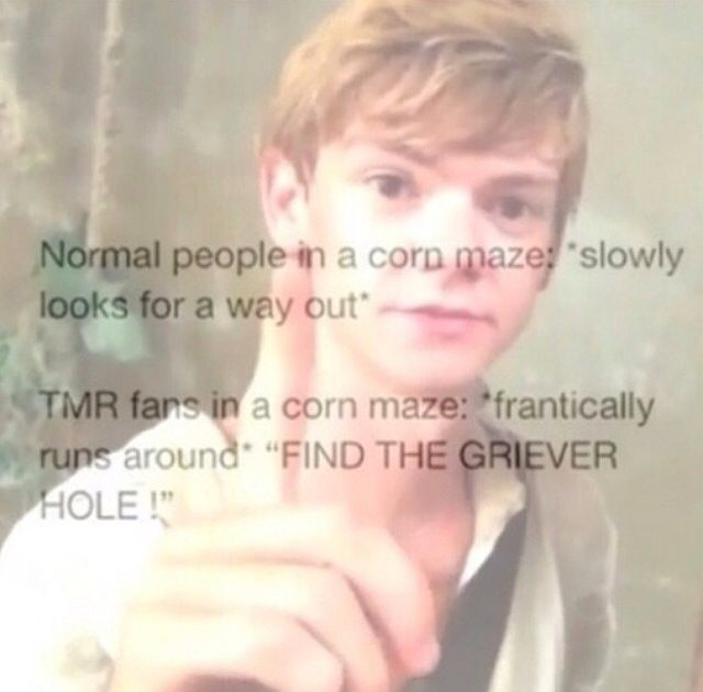 "I would yell ""FIND THE GRIEVER HOLE."" if i ever went in a maze"