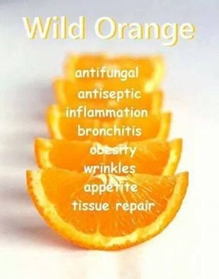 Essential Oil ~ Wild Orange.
