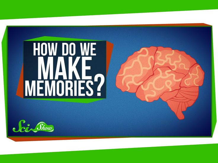 An Explanation of How Memories Form and How Henry Molaison Helped Science Understand Them