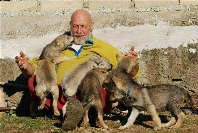 ......  L'amore non ha bisogno di essere compreso ...... ha bisogno di essere dimostrato .......  [Paulo Coelho]