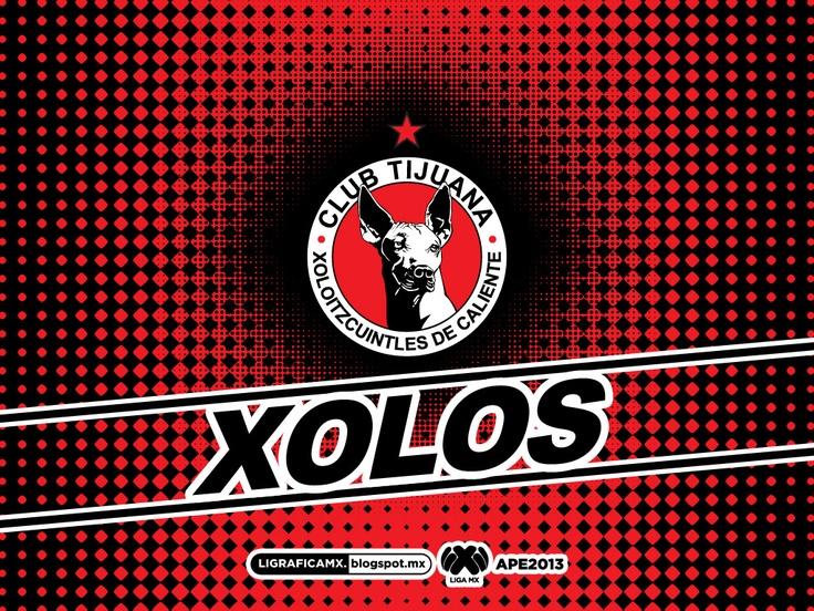 sports soccer club tijuana xolos mexico liga mx.